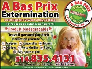 A Bas Prix Extermination Montréal