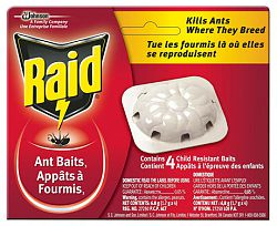 Appât à fourmis Raid