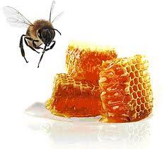 l abeille qui vit en ruche fabrique du miel. Black Bedroom Furniture Sets. Home Design Ideas