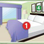 Guide d'identification de la Punaise de lit